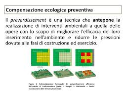 compensazione ecologica bis